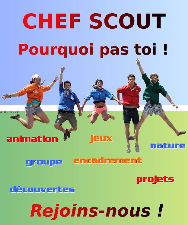 Chef scout